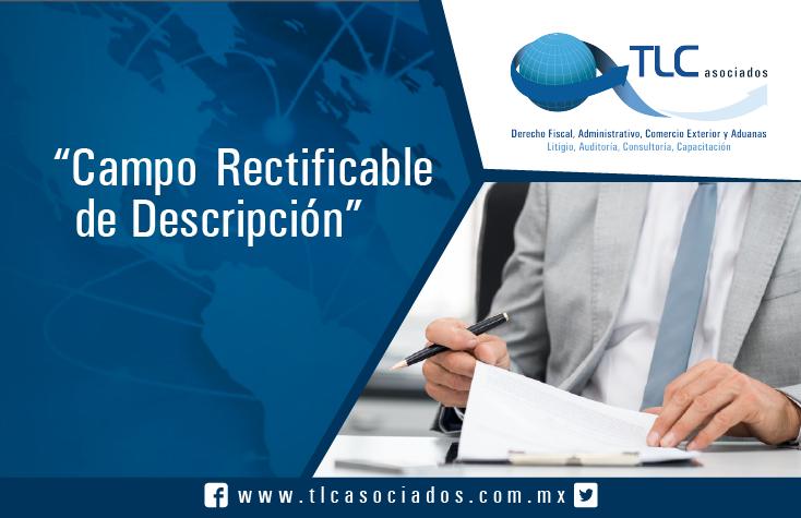 Campo Rectificable de Descripción / Rectifiable Description Field