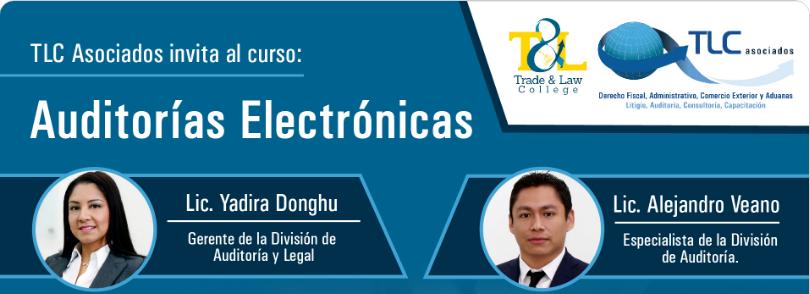 (20-04-2017) Auditorías electrónicas