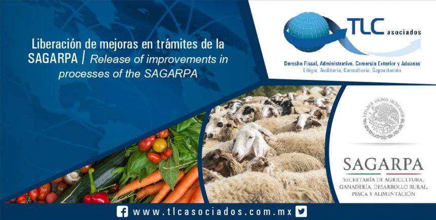 090 – Liberación de mejoras en trámites de la SAGARPA / Release of improvements in processes of the SAGARPA