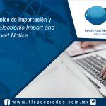 111 – Aviso Electrónico de Importación y Exportación / Electronic Import and Export Notice