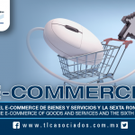 T48 – MENESTERES DEL E-COMMERCE DE BIENES Y SERVICIOS Y LA SEXTA RONDA DEL TLCAN / NECESSITIES OF THE E-COMMERCE OF GOODS AND SERVICES AND THE SIXTH ROUND OF NAFTA