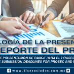 230 – Plazos de Presentación de RAOCE para el PROSEC e IMMEX / RAOCE Submission Deadlines for PROSEC and IMMEX