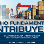 240 – La autocorrección en materia aduanera / Self-correction in customs matters