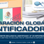 241 – Fiscalización por omitir declarar el identificador 'AF' en importaciones de activo fijo / Inspection for omitting to declare the 'AF' identifier in imports of fixed assets