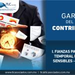 T55 – Garantía del pago de contribuciones por la importación temporal de las mercancías señaladas en el Anexo II del Decreto IMMEX