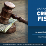 343 – La garantía en un crédito fiscal/ The guarantee in a fiscal credit.