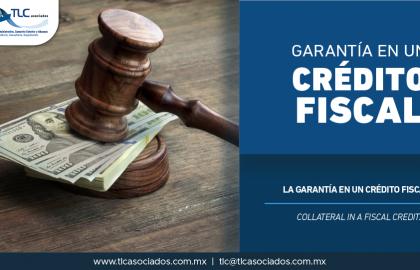 343 – La garantía en un crédito fiscal/ The guarantee in a fiscal credit.