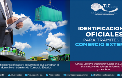 358 – Identificaciones oficiales y documentos que acreditan el domicilio en trámites de Comercio Exterior/ Official Customs Declaration Codes and Documents that validate the Address in Foreign Trade Procedures.