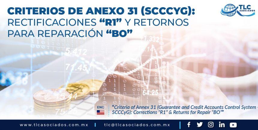 """417 – Criterios de Anexo 31 (SCCCyG): Rectificaciones """"R1"""" & Retornos para Reparación """"BO""""/ Criteria of Annex 31 (SCCCyG): Rectifications """"R1"""" & Returns for Repair """"BO"""""""