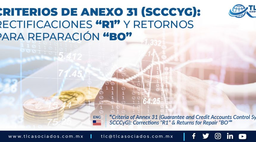 "417 – Criterios de Anexo 31 (SCCCyG): Rectificaciones ""R1"" & Retornos para Reparación ""BO""/ Criteria of Annex 31 (SCCCyG): Rectifications ""R1"" & Returns for Repair ""BO"""