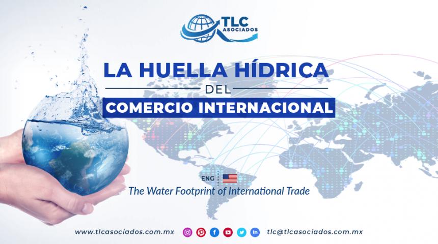 RI7 – La Huella Hídrica del Comercio Internacional/ The Water Footprint of International Trade