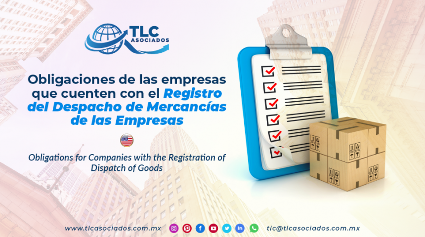 AL13 – Obligaciones de las empresas que cuenten con el Registro del Despacho de Mercancías de las Empresas/ Obligations for Companies with the Registration of Dispatch of Goods