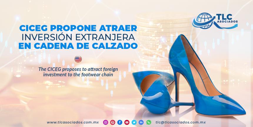 NC6 – CICEG propone atraer inversión extranjera en cadena de calzado/ The CICEG proposes to attract foreign investment to the footwear chain