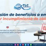 C24 – Suspensión de beneficios a empresas IMMEX por incumplimiento de obligaciones/ For further information or comments regarding this article, please contact