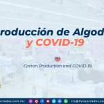 RI26 – Producción de Algodón y COVID-19/ Cotton Production and COVID-19