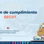 DC4 – Dictamen de cumplimiento SECIIT/ SECIIT Compliance Report