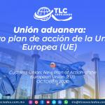RI29 – Unión aduanera: nuevo plan de acción de la Unión Europea (UE)/ Customs Union: New Plan of Action of the European Union (EU)