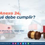 Anexo 24, ¿con qué debe cumplir?/ Annex 24, What Must You Comply With?
