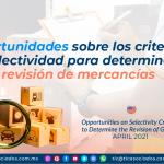 Oportunidades sobre los criterios de selectividad para determinar la revisión de mercancías